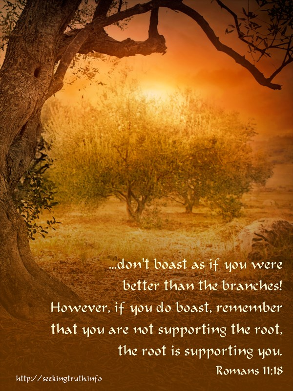 Romans 11:18 then don't boast as if you were better than the branches! However, if you do boast, remember that you are not supporting the root, the root is supporting you.