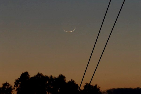 new moon, torah, bible, biblical feast, moed